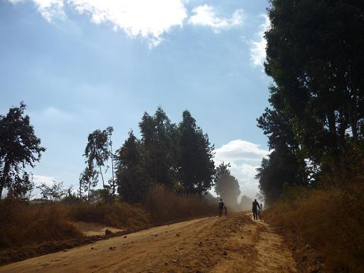 Malawi_rural_road_2